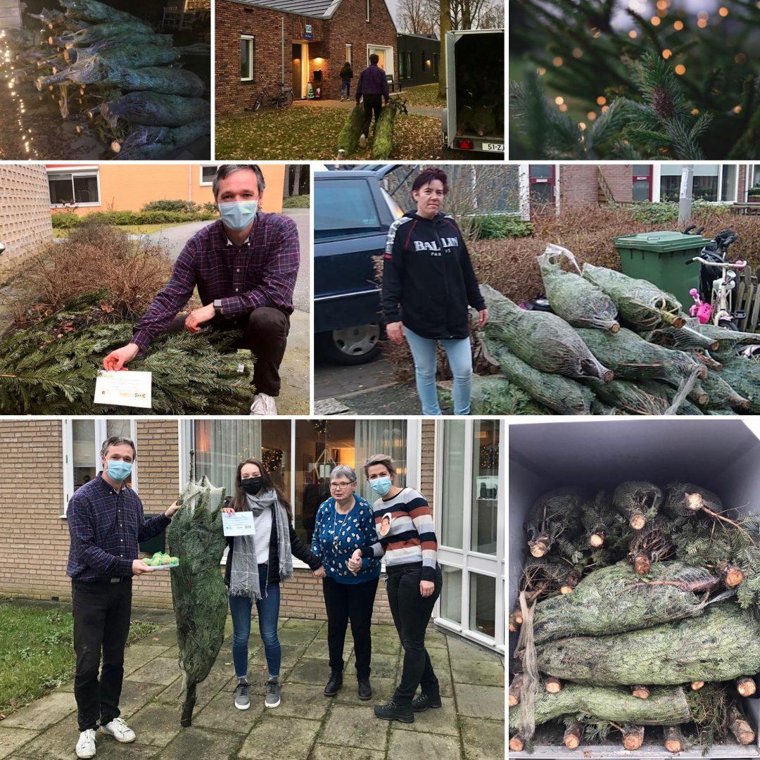 Kerstbomen actie van IKEA